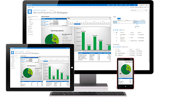 Microsoft Dynamics GP Partner screenshot